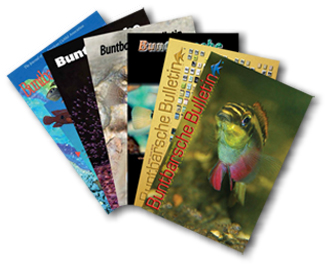 BB Back issues