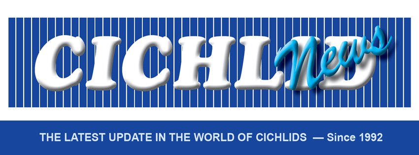 Cichlid News