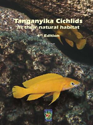Tanganyika Cichlids #4