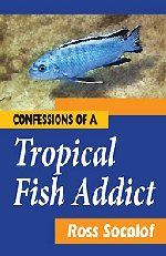 Confessions of a Tropical Fish Addict